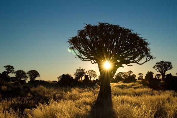 Reiseziel Namibia