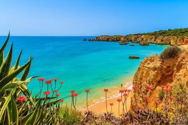 Warum ist Portugal so beliebt?