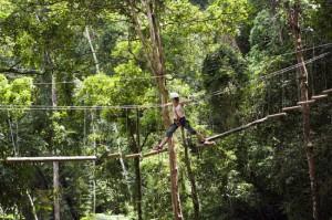 Überquerung einer Hängebrücke im Regenwald