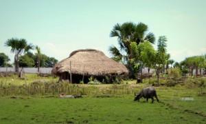 Unberührte Zivilisation in Timor Este